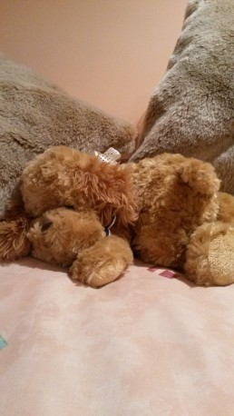 teddy_on_bed