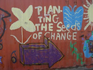 seeds_graffiti
